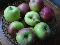 applesbasket