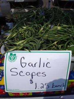 whodoesgarlicscapes