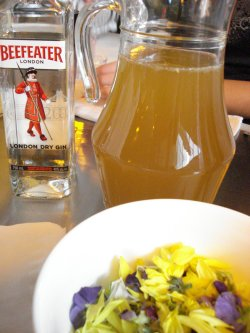 ginbeefeater