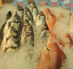 slms2fish