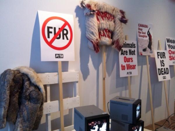 politics_fur